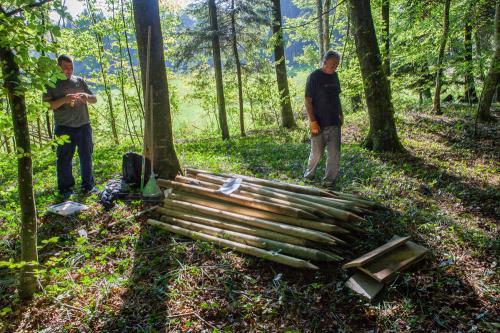 Waldsofa (15 von 24)