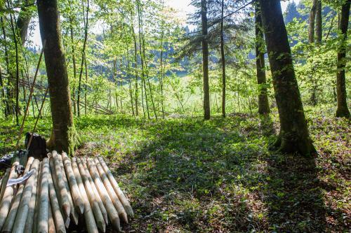 Waldsofa (16 von 24)