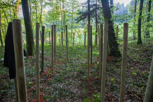 Waldsofa (24 von 24)