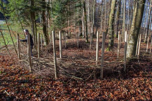 Waldsofa (4 von 24)