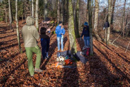 Waldsofa (5 von 24)