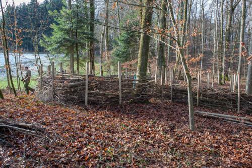 Waldsofa (7 von 24)